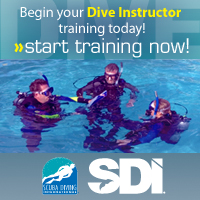 Sign up for SDI Training Today